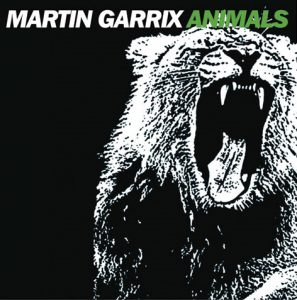 Martin Garrix photo d'animaux
