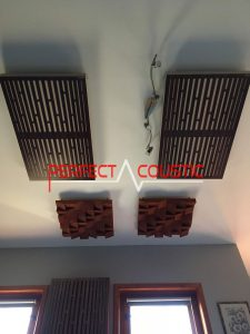 Piège à basse au plafond (2)
