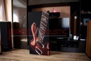 conception acoustique de la salle d'exposition hifi avec absorbeurs acoustiques (3)