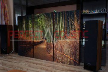 conception acoustique de la salle d'exposition hifi avec absorbeurs acoustiques (4)