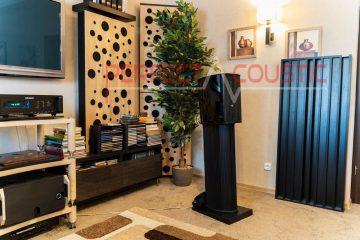 salon avec membrane absorbante acoustique (3)